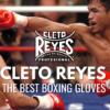 Cleto Reyes, i guanti dei grandi campioni
